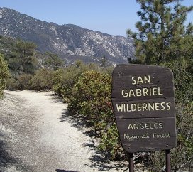 San Gabriel Wilderness starts just the other side of the road.