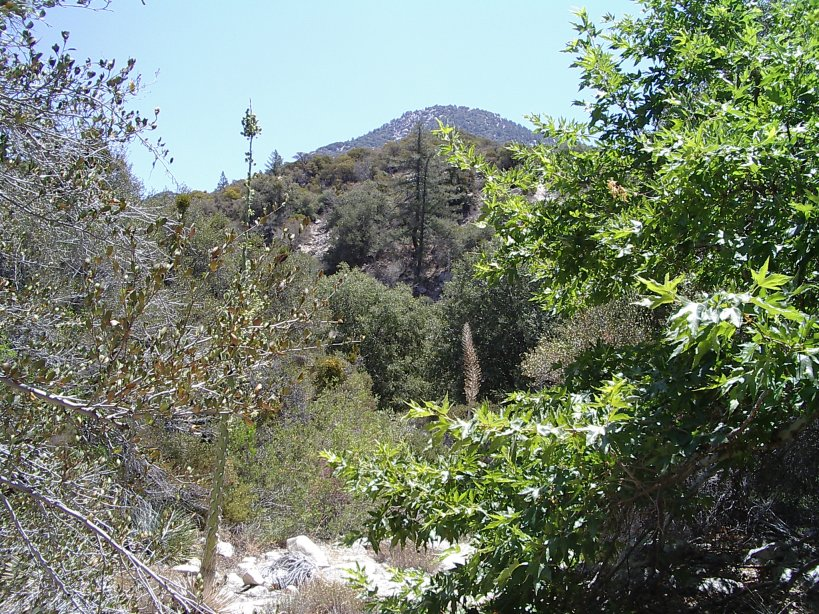 Waterman Mountain? One of the Twin Peaks?