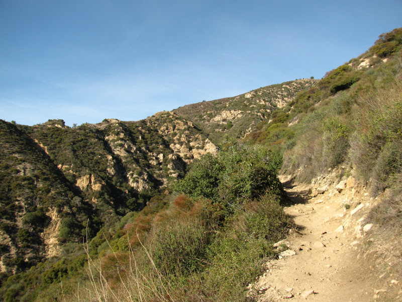 Trail winding up the east side of Los Flores Canyon.
