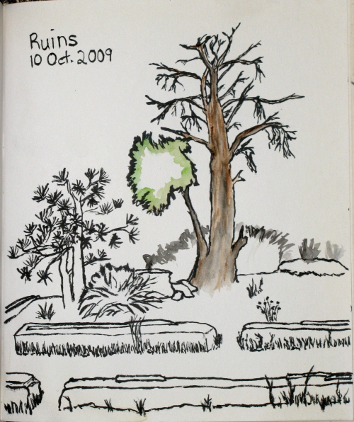 Sketch of a tree with only one branch still living.
