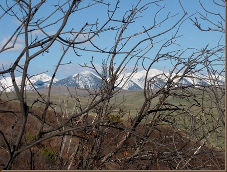 Spring snow on the mtns