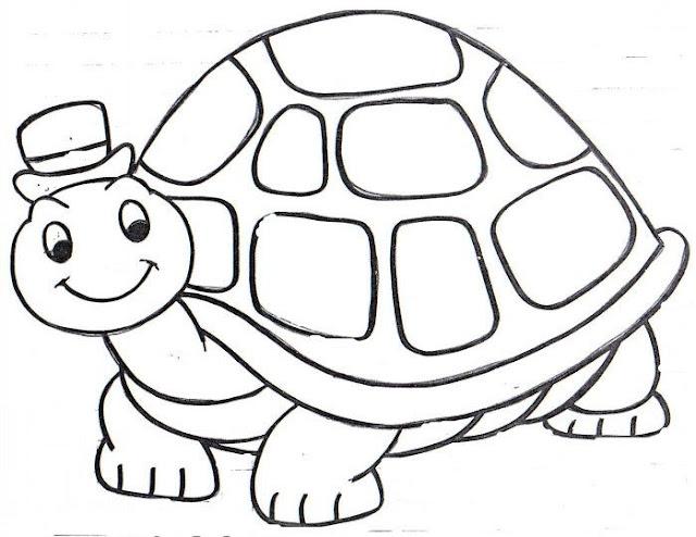 Colorear Tortugas Dibujos De Tortugas Para Colorear