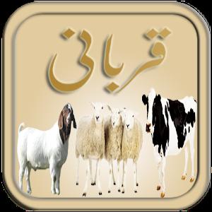 Qurbani - Eid ul Azha