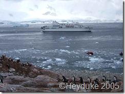 Le Diamant ln Antarctica