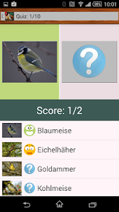 Vogelquiz Free Screenshot