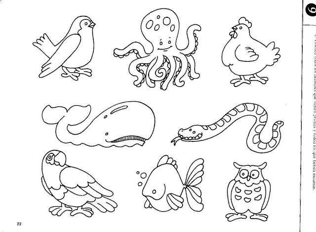 Dibujos Animales Del Mar Para Pintar