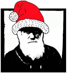 Darwin santa hat