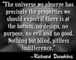 Fools heart dawkins quote