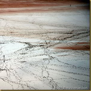 Lake Ballard - Western Australia - 2