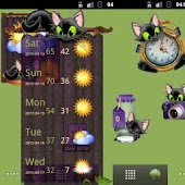 Cute Kitty Widgets
