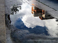 Cloud reflection in the puddle
