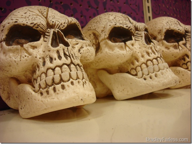 Skulls on a shelf at a Walmart in Georgia.