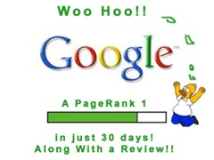woohoo! A PageRank 1 and a beautiful review
