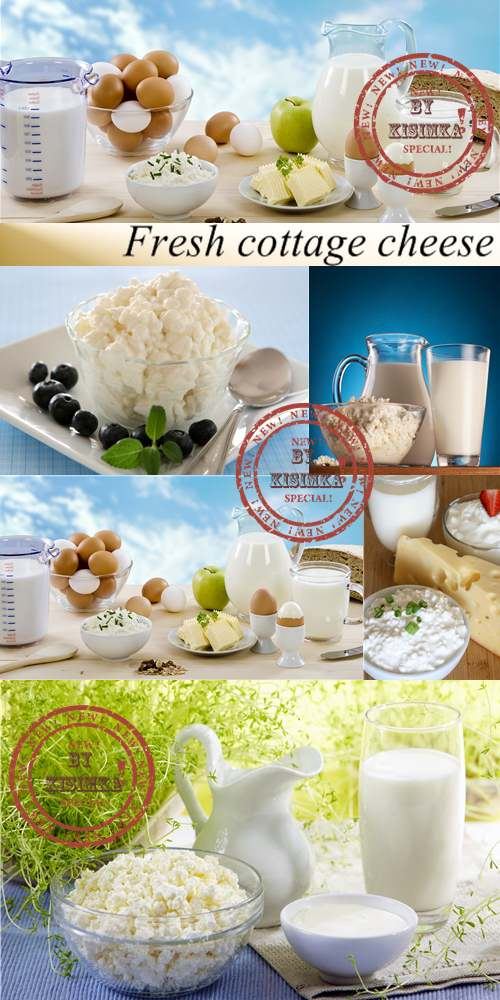 Stock Photo: Fresh cottage cheese
