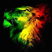 Rasta Lion Live Wallpaper