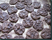 cocoa choc chips cooling (1)