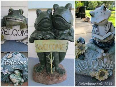 frog welcome0511