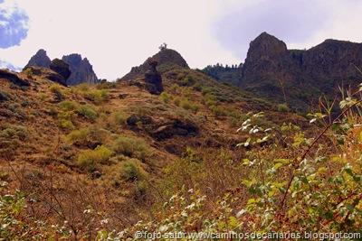 1350 Los Barrancos(Roques de Tenteniguada)