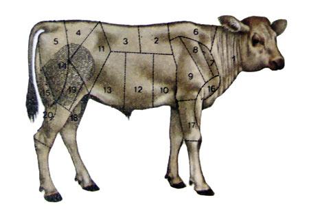 La mappa del vitello 398c8ed970ea