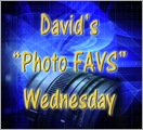Photo Favs wed