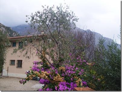 Villa Margherita Hotel Quericianella
