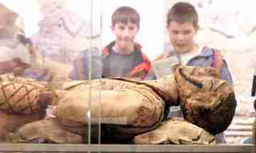 Museum professionals: Hands off our mummies!