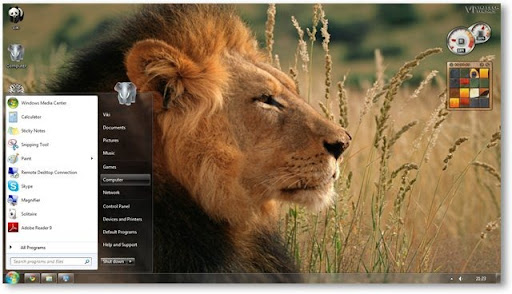 Fotos De Animales Salvajes Para Fondo De Pantalla: Vida Salvaje Descarga Full Imagenes HD