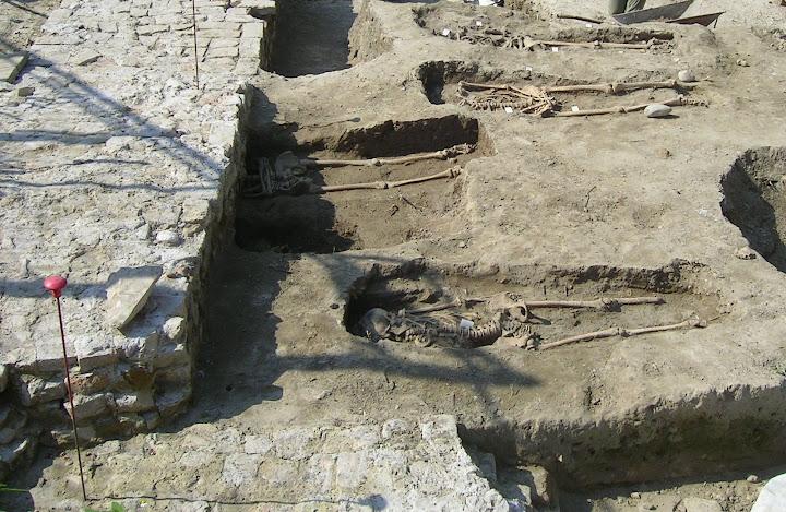 Scavi archeologici a Noventa