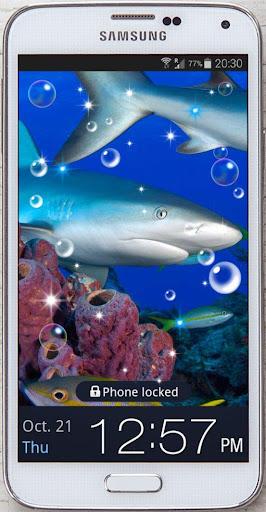 Blue Shark HD live wallpaper