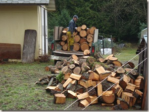 getting wood 010