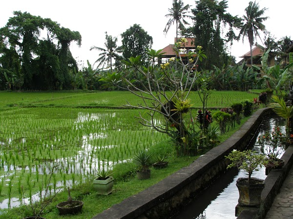 Imagini Indonezia: Bali cazare