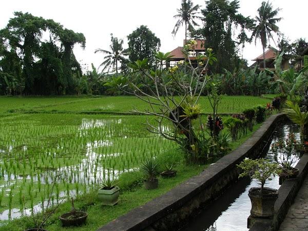 Obiective turistice Indonezia: Bali cazare
