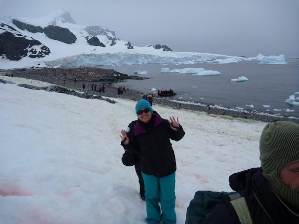 debarcare in Antarctica.JPG