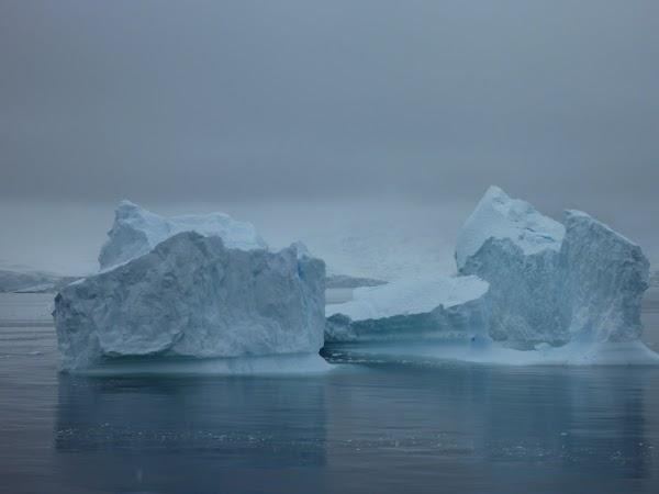 Imagini Antarctica: iceberg.JPG