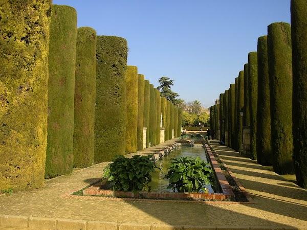 Obiective turistice Spania: Alcazar