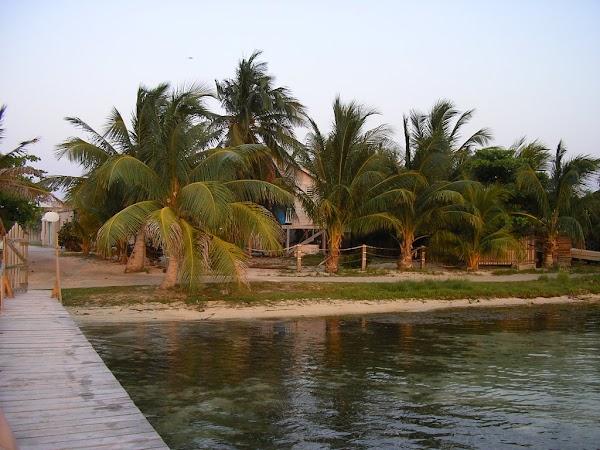 7. in spatele palmierului e motelul.JPG