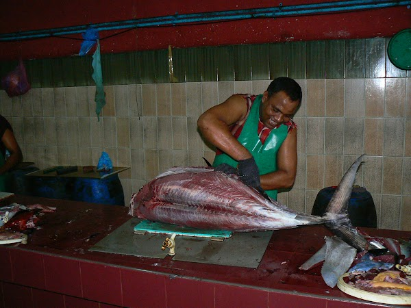 Imagini Maldive: piata de peste.JPG