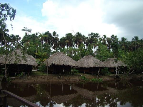 Obiective turistice Venezuela: cazare in delta. la flux erau in apa.JPG