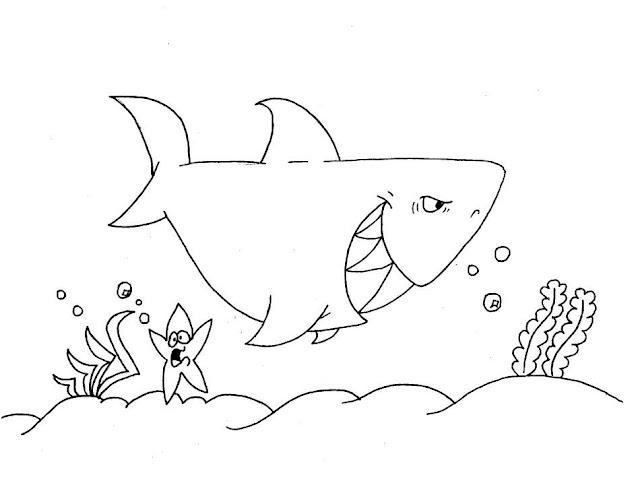 Dibujos De Animales Del Mar: ANIMALES DEL MAR PARA PINTAR: TIBURONES