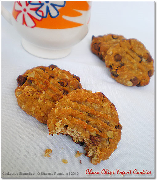 Choco Chip Yogurt Cookies