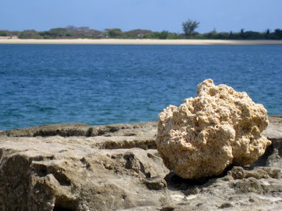 Rock on the beach in Lamu Kenya