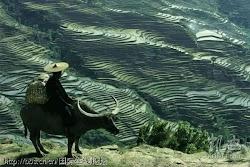 凝固历史 外国摄影大师镜头下的美丽中国
