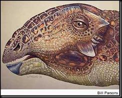 AfghanWar-Dinosaurs-TatankacephalusCooneyorum 1