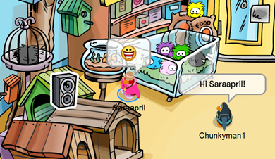 Pet Shop Club Penguin :)