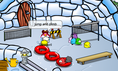 Saraapril's Puffle Agility Obstacle Course :)