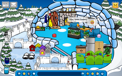 Igloo Club Penguin