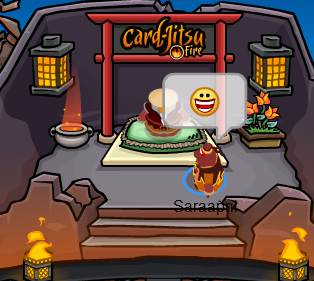 I have the FIRE SUIT Club Penguin