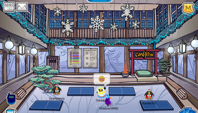 Winter Decorated Dojo :)