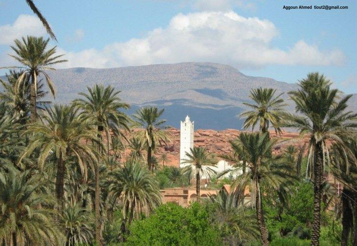 تعرفوا على ولايات الجزائر 48 01012.JPG
