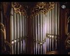 орган и надставная труба